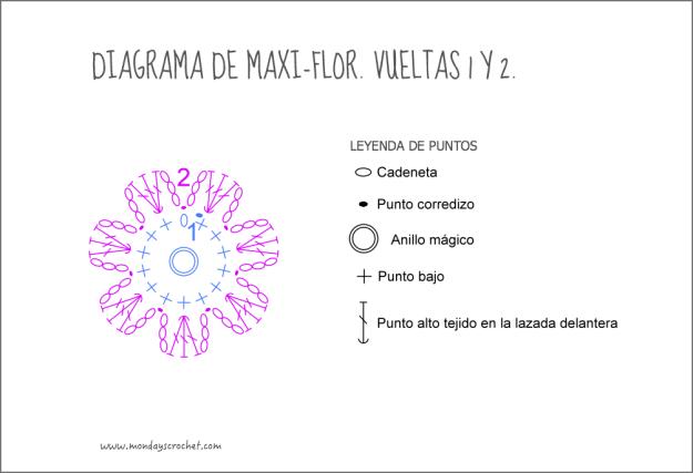 Maxi-flor-vuelta 2
