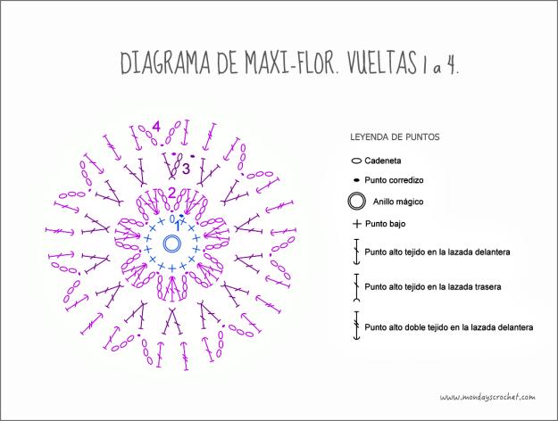 Maxi-flor- vuelta 4