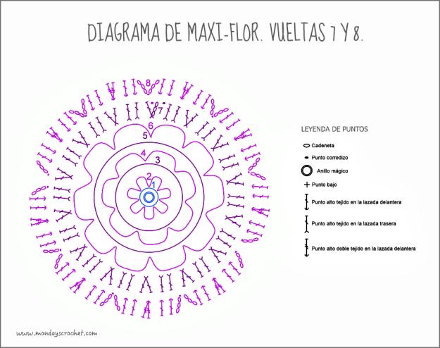 Maxi-flor-vuelta 8