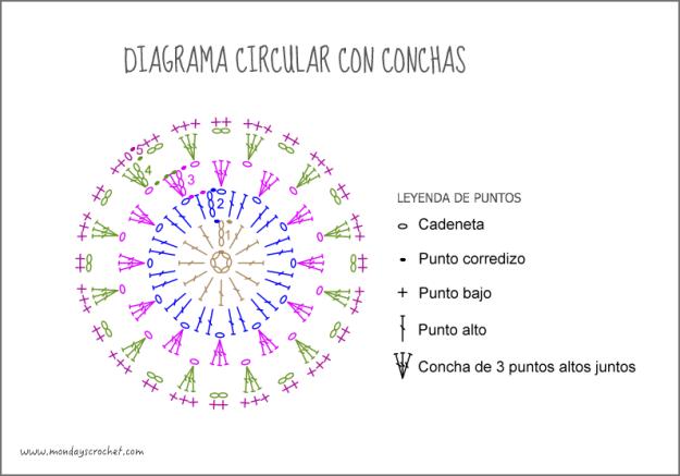 Diagrama-circular-conchas